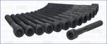 Комплект болтов головки цилидра Ajusa 81014600