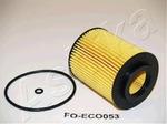 Масляный фильтр Ashika 10-ECO053