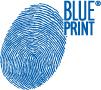 Комплект тормозных колодок, дисковый тормоз Blue Print ADJ134249
